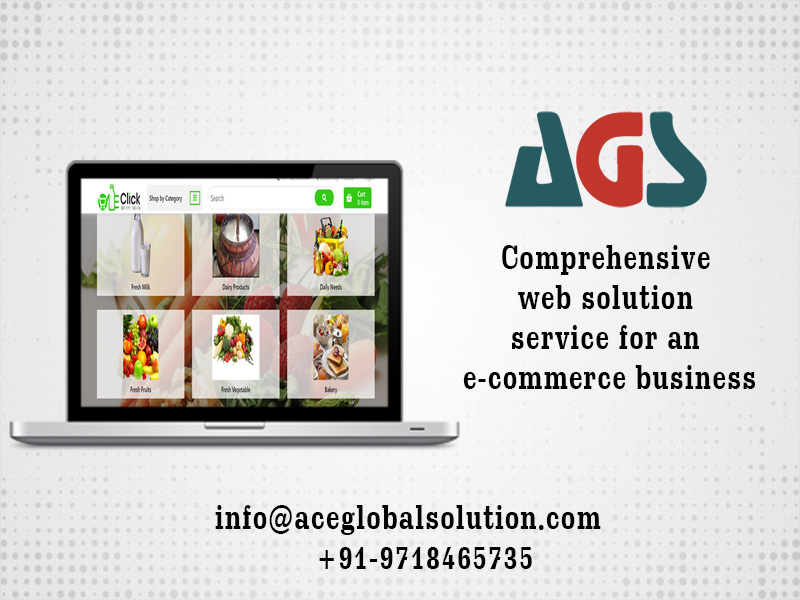 Comprehensive Web Solution Service for an E-commerce Business